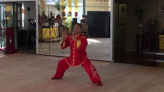 南太极拳(South TaiJi Quan) 徐昌文