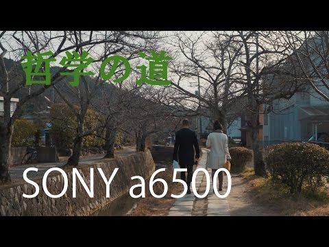 SONY α6500 4K 哲学の道 京都(Philosopher's Walk in KYOTO)