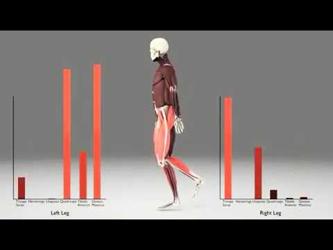 Les exercices avec les haltères pour les muscles des mains