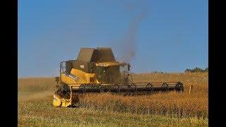 Moisson 2018 | Harvest 2018 | New Holland CR 9090