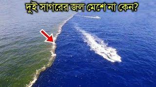 ২ টি সাগরের জল একসাথে মেশে না কেন   This Is Why These Two Oceans Don't Mix in Bangla