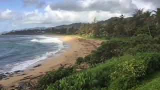 """Honeymoon In Hawaii"" an eBook by Jean Ann Shirey"