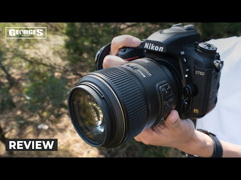 A Must Have Nikon Macro Lens | Nikon 105mm Micro F2.8 Review by Georges Cameras