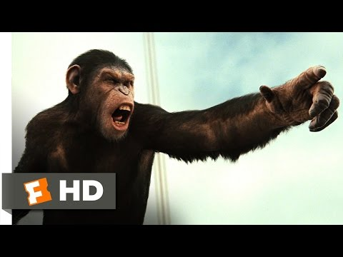 Rise of the Planet of the Apes (2011) - Battle for the Bridge Scene (4/5) | Movieclips