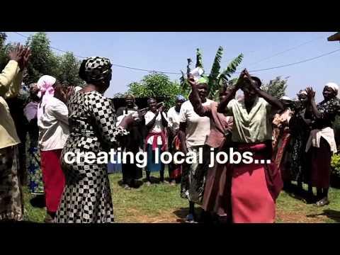 Empowering Rural Kenyans through Reforestation