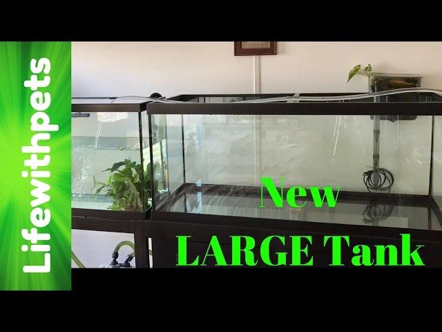 New 75 Gallon Tank Set Up (Part one)