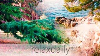 Relaxing Instrumental Music - easy, calm, light - N°105 (4K)
