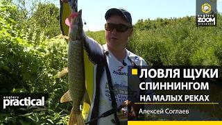 Щука в малых реках ловля щуки на малой реке