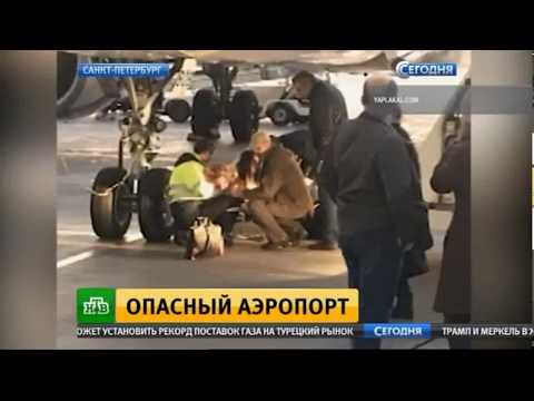 Где купить возбудитель на украине