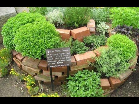 Come coltivare una spirale di erbe aromatiche - Orsù, orti in ...