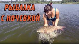 Рыбалка в брянской области на карпа и карася