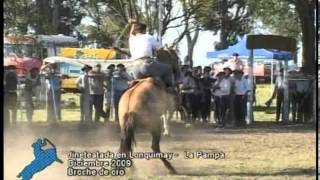 preview picture of video 'Broche de Oro en Jineteada de Lonquimay, La Pampa (Año 2009)'