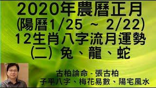 2020年農曆正月(陽曆1/25~2/22) 12生肖流月運勢分享 (二) 兔、龍、蛇 ~~張古柏