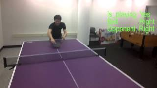 Pingpong Assistant with Google Glass