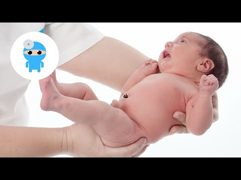 Emberi testhossz ascaris