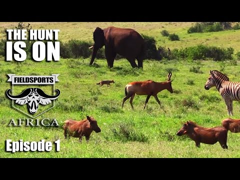 Fieldsports Africa – The Hunt Is On