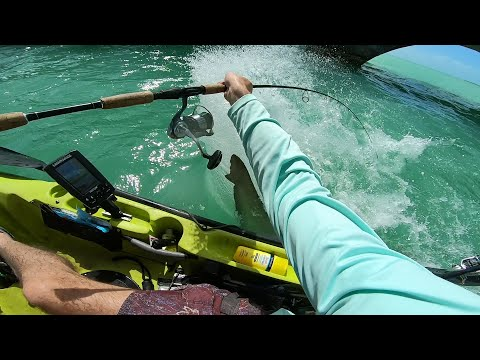 Inches From Death - Florida Keys Fishing Experience Day 2