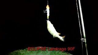 Ловля окуня ночью на спиннинг