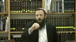 44 (א) הלכות שבת או''ח סימן שח נספח לסעיף ג' הרב אריאל אלקובי שליט''א