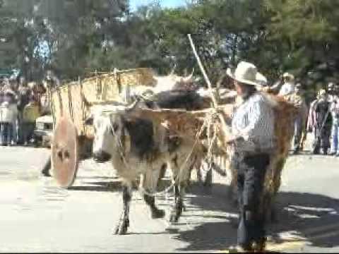Cavalgada em Tomazina - www.JORNALNR.com.br