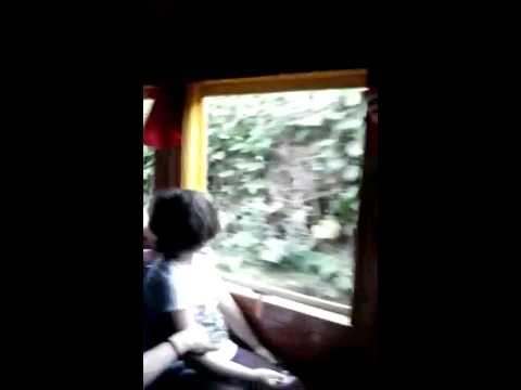 Liberdade sobre Rodas passeio de trem em Apiuna 2