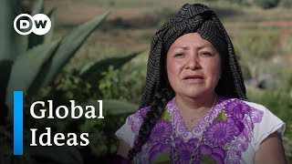 Mexico: Sustainable tourism | Global Ideas