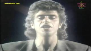 CASA LULU SANTOS VIDEO ORIGINAL ANO 1986 [ HQ ]