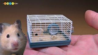 DIY Miniature Hamster cage ミニチュアハムスターケージ作り
