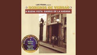 """Video thumbnail of """"Los Soneros de Verdad - Bilongo"""""""