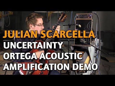 Julian Scarcella   Uncertainty   Ortega Acoustic Amplification Demo