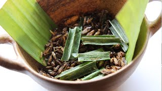 Thai Restaurant Serves 5-Course Insect Infested Dinner