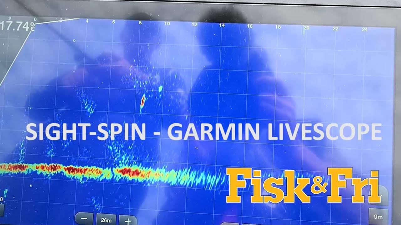 NY VIDEO: SIGHT-SPIN EFTER SØERNES ROVFISK MED GARMIN LIVESCOPE