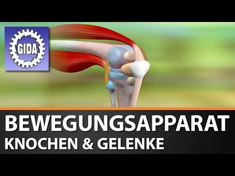 Subluxation des axialen Atlanta-Gelenke