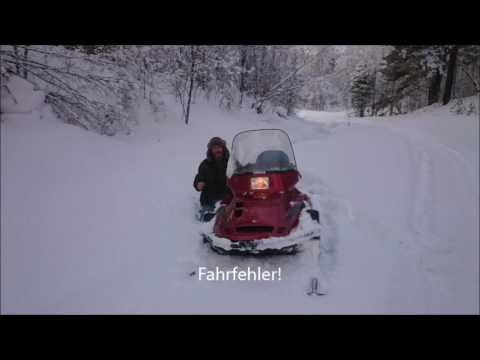 Sibirienwolf fährt Schneemobil