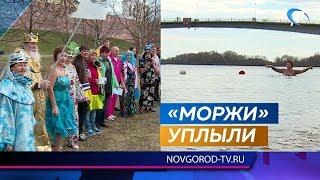 Новгородские моржи закрыли сезон зимнего плавания