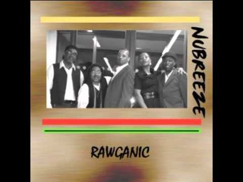 NATURE BOY (REGGAE VERSION) - NUBREEZE BAND