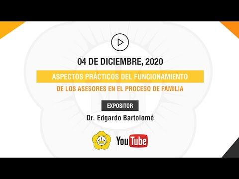 ASPECTOS PRÁCTICOS DEL FUNCIONAMIENTO DE LOS ASESORES EN EL PROCESO DE FAMILIA - 04 de Diciembre 2020