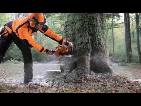Stihl MS 661 C-M Chainsaw in Fairbanks, Alaska - Video 1