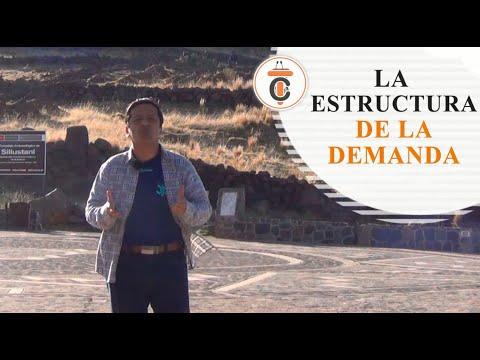 LA ESTRUCTURA DE LA DEMANDA - Tribuna Constitucional 95 - Guido Aguila Grados