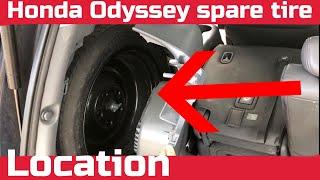 Honda odyssey Spare Tire Location