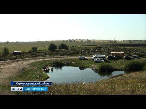 Рядом с Голубым озером в Кармаскалинском районе высадили 12 тысяч сеянцев деревьв