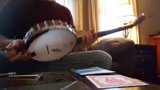 Nashville tuning 6 string Martin Smith banjo (Highstrung) conversion