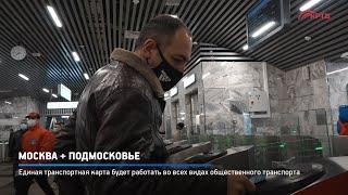 Москва + Подмосковье
