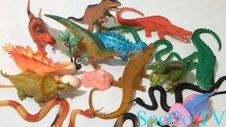 Bộ sưu tập đồ chơi thế giới động vật - đồ chơi dành cho trẻ em mới nhất 2018
