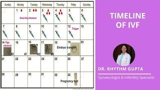 Timeline of IVF Explained Correctly | Dr Rhythm Gupta - Fertility Specialist
