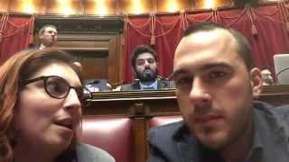 Manlio Di Stefano e Laura Castelli - #CosAccade in Parlamento? il delirio.