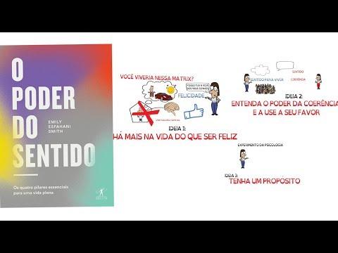 Resenha Livro O PODER DO SENTIDO  SejaUmaPessoaMelhor