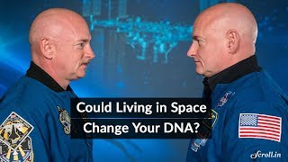 NASA astronaut Scott Kelly's DNA did not change in space