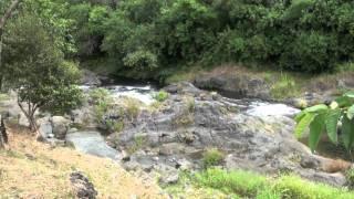 preview picture of video 'La rivière Langevin, Saint Joseph, ile de la réunion (5)'
