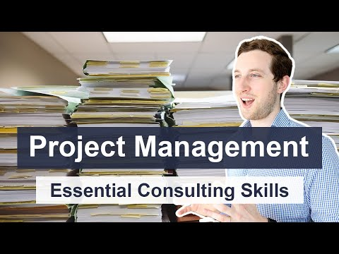 Project Management Consulting Skills - How consultants manage ...